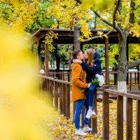 Осенью вместе тепло :: Дарья Агафонова