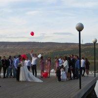 Чужие свадьбы :: Наталья (D.Nat@lia) Джикидзе (Берёзина)