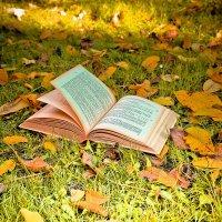 Осеннее.. :: Надежда