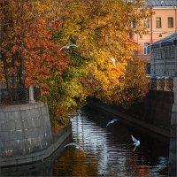 Ново-адмиралтейский канал. :: Юрий