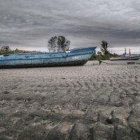 Вода ушла :: Константин Бобинский