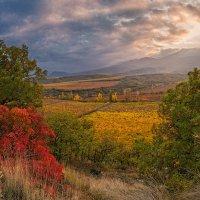 Осень в Алуште :: Сергей Радин
