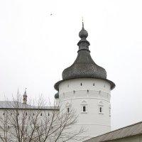 Угловая башня и стены Ростовского кремля. :: Михаил Попов