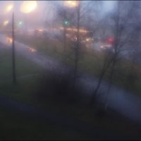 Утро туманное... :: galina bronnikova
