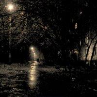 Осенний дождь. :: Oleg4618 Шутченко