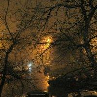 Туман. :: Oleg4618 Шутченко