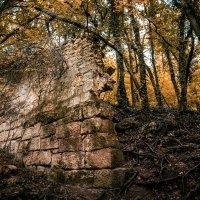 Древние стены :: Nyusha