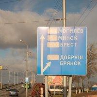 куда поедем? :: Владимир Зырянов