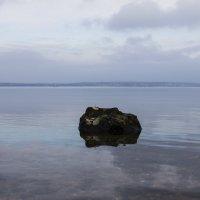 Ноябрьское озеро :: Maxim Evmenenko