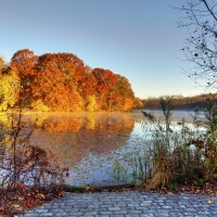 Autumn in NYC :: Vadim Raskin