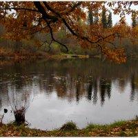 Осенняя прощальная :: Юлия Геннадьевна Гончарова