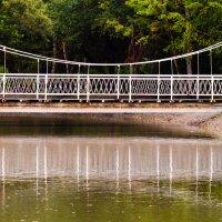 мост :: Наталья Литвинчук