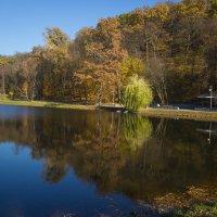 Осень у пруда :: Андрей Нибылица