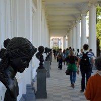 Бюсты на Камероновой галерее. :: Sergey A.