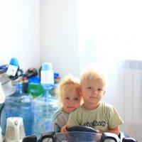 Детки-конфетки :: Мария Вылегжанина