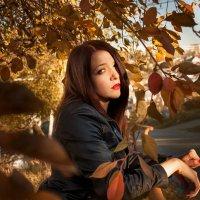 Autumn :: Евгения Комиссарова