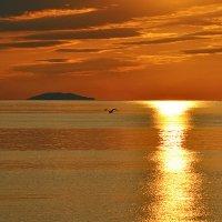Загадочный остров :: Александр Бойко