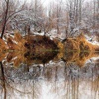 Прекрасная природа! :: Николай Масляев
