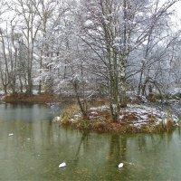 Старый пруд.... :: Святец Вячеслав