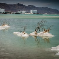 Мёртвое море :: Валерий Цингауз