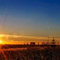 Догорает октябрь под солнцем осенним... :: Анатолий Клепешнёв