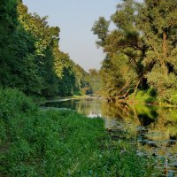 Опять же, Лукоморье. :: kolin marsh