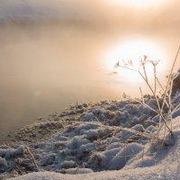 Холодное солнце... :: Sergey Apinis