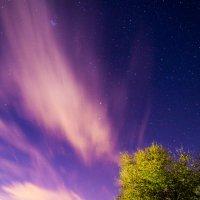 ночная красота :: Aizek Kaniyazoff