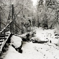Опять зима.... :: Сергей Добрыднев