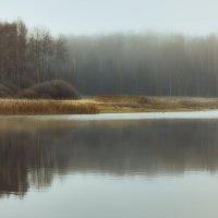 засыпающая природа :: Дмитрий Булатов