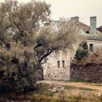 Старый город :: Елизавета Вавилова