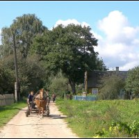 Утро в деревне :: Василий Хорошев