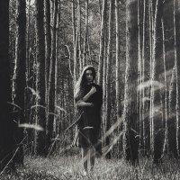 Найду ли твой я след в густом лесу?... Помоги немного - окликни меня, мой ангел... :: Koral Koral