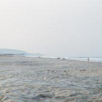wide sand :: Мяу Мяу