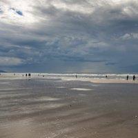 Отлив в Довиле :: Елена Фокина
