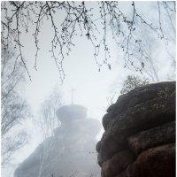 туман в БЕЛОКУРИХЕ 2 :: Дмитрий Филиппов