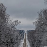 Дорога... :: Наталья Rosenwasser