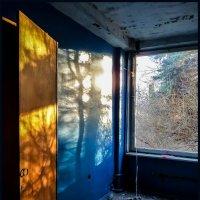 Осень в окне... :: Наталья Rosenwasser
