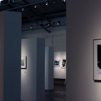 Выставка :: Anna Penchukova