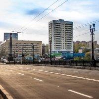 Донецкий мост :: Anna Penchukova