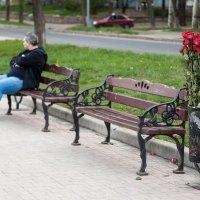 Обиделся :: Anna Penchukova