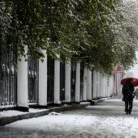 майский снегопад :: Хмурый *