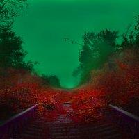 fantastic road :: Lilia Kogonia