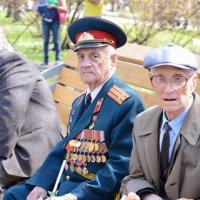 9 мая 2013 :: Алексей Короткевич