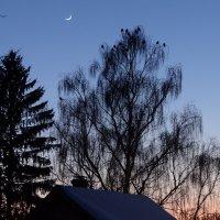 холодный  вечер :: Дмитрий Потапов