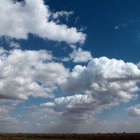 Весеннее небо в Астраханской области :: Борис Корсаков