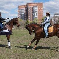 шериф или полиция..? :: Елена Медведева