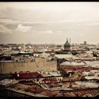 По крышам :: Александр Хохлов