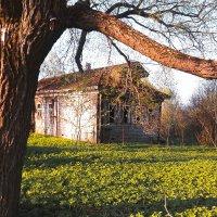 заброшенный дом :: Ольга Сократова