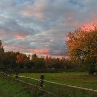 Розовый закат :: Лариса Кайченкова
